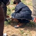 Jugendliche versuchen auf dem Sit-in-Platz einen mazedonischen Blindgänger zu zünden.