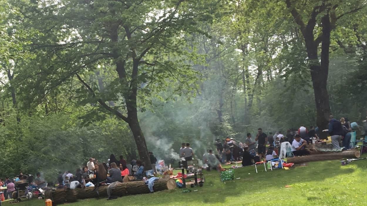 Landshut Hunderte Migranten Grillen Im Naherholungsgebiet Pi News