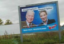 AfD-Plakat irgendwo in Deutschland...