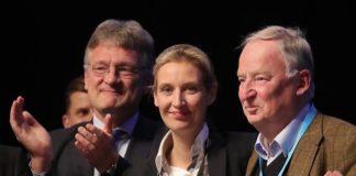 Die AfD legt derzeit als einzige Partei zu (v.l.n.r.): Jörg Meuthen, Alice Weidel und Alexander Gauland.