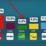 Für die Grünen könnte es laut aktueller INSA-Wahlumfrage am 24.9. knapp werden.