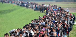 Die AfD ist die einzige Partei, die sich gegen die Kolonisation Deutschlands einsetzt.